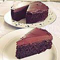 Chocolate fudge cake (sans gluten)