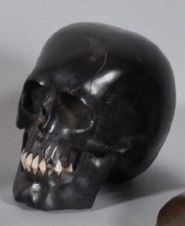 Crâne en ébène sculpté. Début XIXème siècle. photo Eve