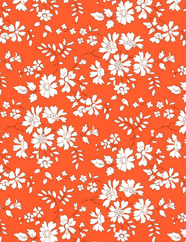 Capel 3055 Z - Orange - zoom