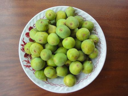 Figues3 photosN