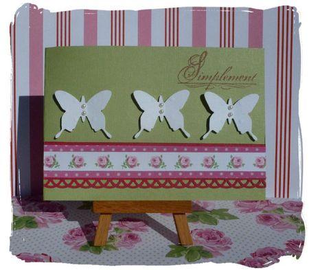 Papillons-Toga5