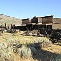 J10 : Cody - Yellowstone
