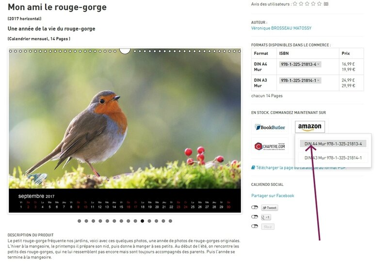 calendrier-rouge-gorge