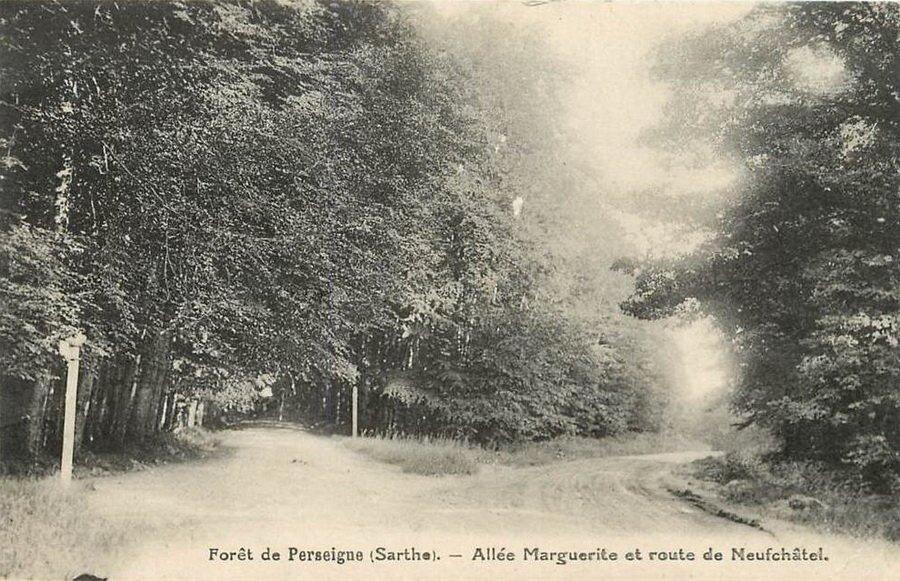 Le 24 décembre 1789 à Mamers : Vol de bois en forêt de Perseigne.