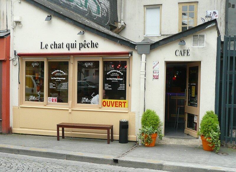 Rennes-le-chat-qui-peche