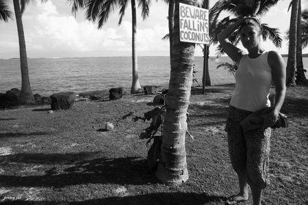 beware coconut NB