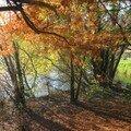 automne074