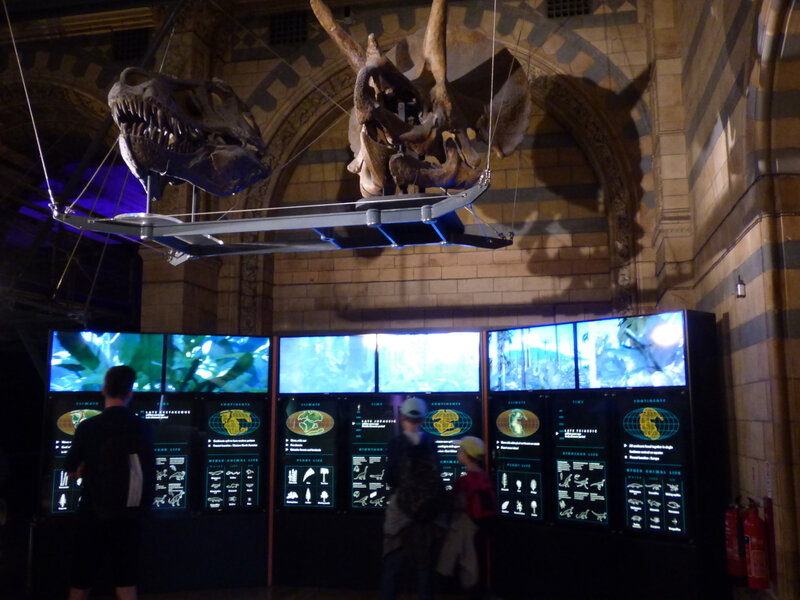 25 Londres Natural History Museum (41)