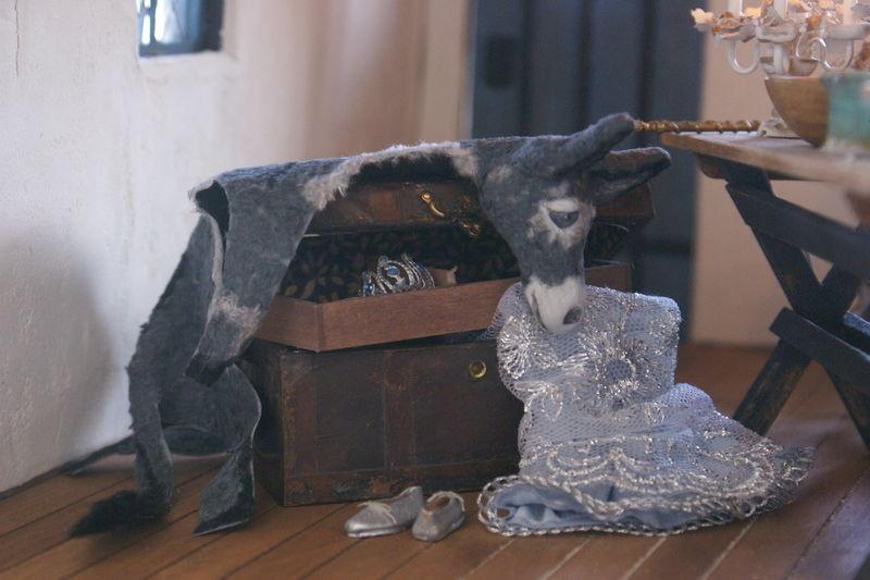 La peau d'âne et la robe couleur de lune