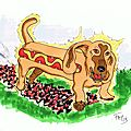 Animaux sandwichs: hot dog