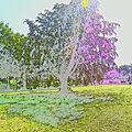 Effets créatifs à baguer-pican (ille-et-vilaine) le 5 août 2018