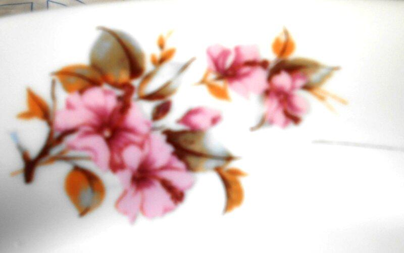 flores pintadas 041