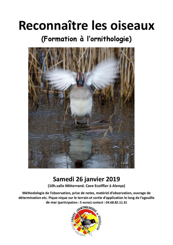 Formation ornitho 2019 Word-page-001