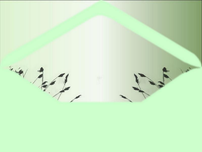 création minouchapassion (17)