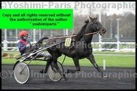 Master Grand National du Trot Paris-Turf 6 decembre 2015,heat,Val Royal,copie blog,©Yoshimi-Paris Photographie,I7D_6612 (4)