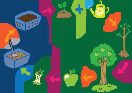 compost-COLOR-WEB