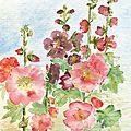 39 Roses trémières