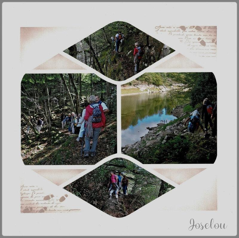 Forêt de Mervent (13)