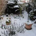 la toute première neige mi novembre