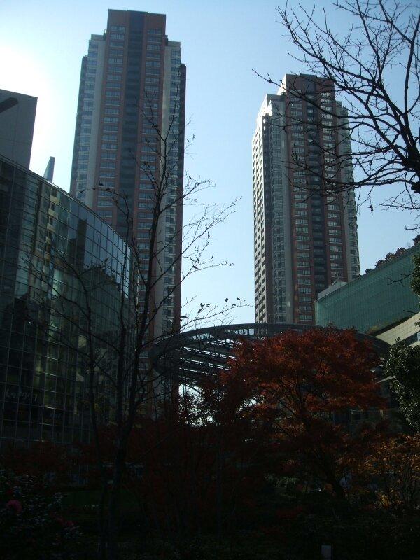 Shinjuku (3)