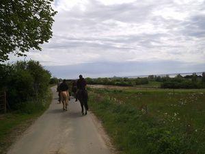 Rando Baie 2012 cheval (32)