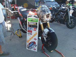 Raspo ZRX Monster Race Carole 2012