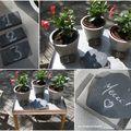Pots zinc1-5-2010