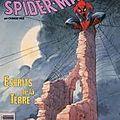Man - o -spiders : une araignée dans la lande
