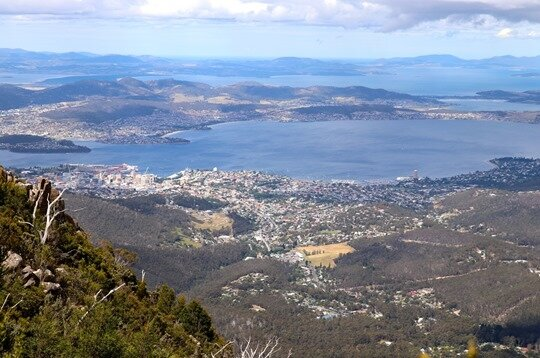 Mt Wellington08