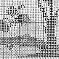 S.a.l. génération de brodeuses (56)