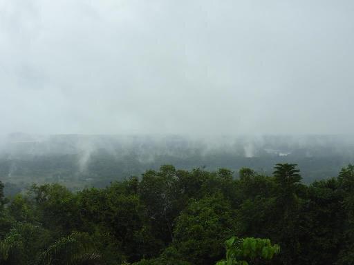 Vue du carbet du sentier de la Montagne des Singes