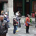 La Maison du Prince Gong - Rencontre avec les Pandas