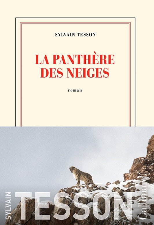 LA PANTHERE DES NEIGES - SYLVAIN TESSON