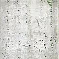 Gerhard richter, grau (gris), 2006