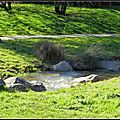La roseraie-bordeaux-lacs 33300