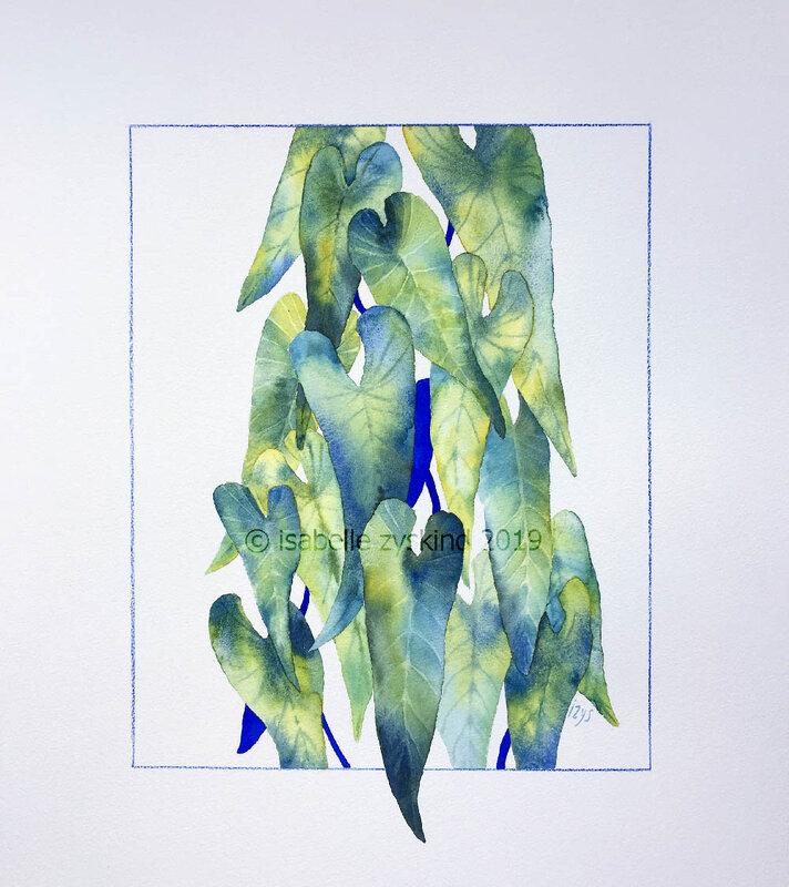 Philo bleu w40x45 0619