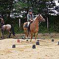 équitation d'extérieur - parcours en terrain varié (170)