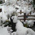 Un dernier sursaut de l'hiver ….