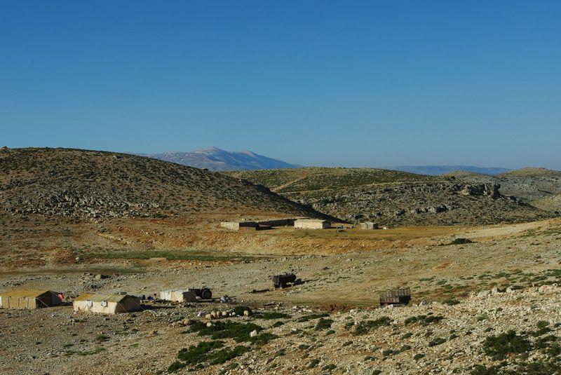 Bedouins 2