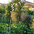 Windows-Live-Writer/Jardin_10232/DSCN0735_thumb