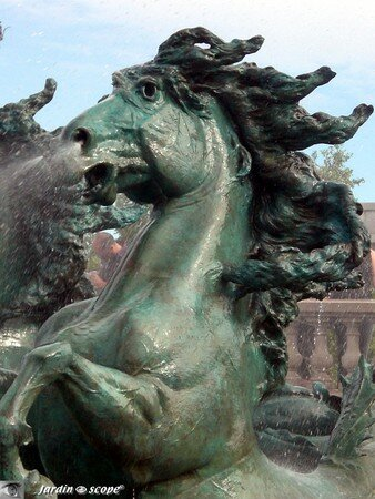 7140_Allegorie_cheval