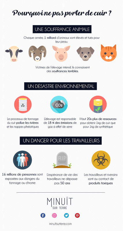 infographie-cuir-1