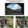 06. Sortie Champignon 2016