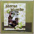 sterne blanche2