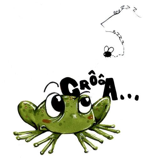 Feutre_grenouille