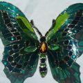 2010_0806papillons-06aout-100027