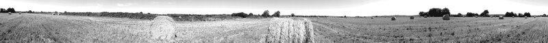 20160812_153903 Noir et blanc