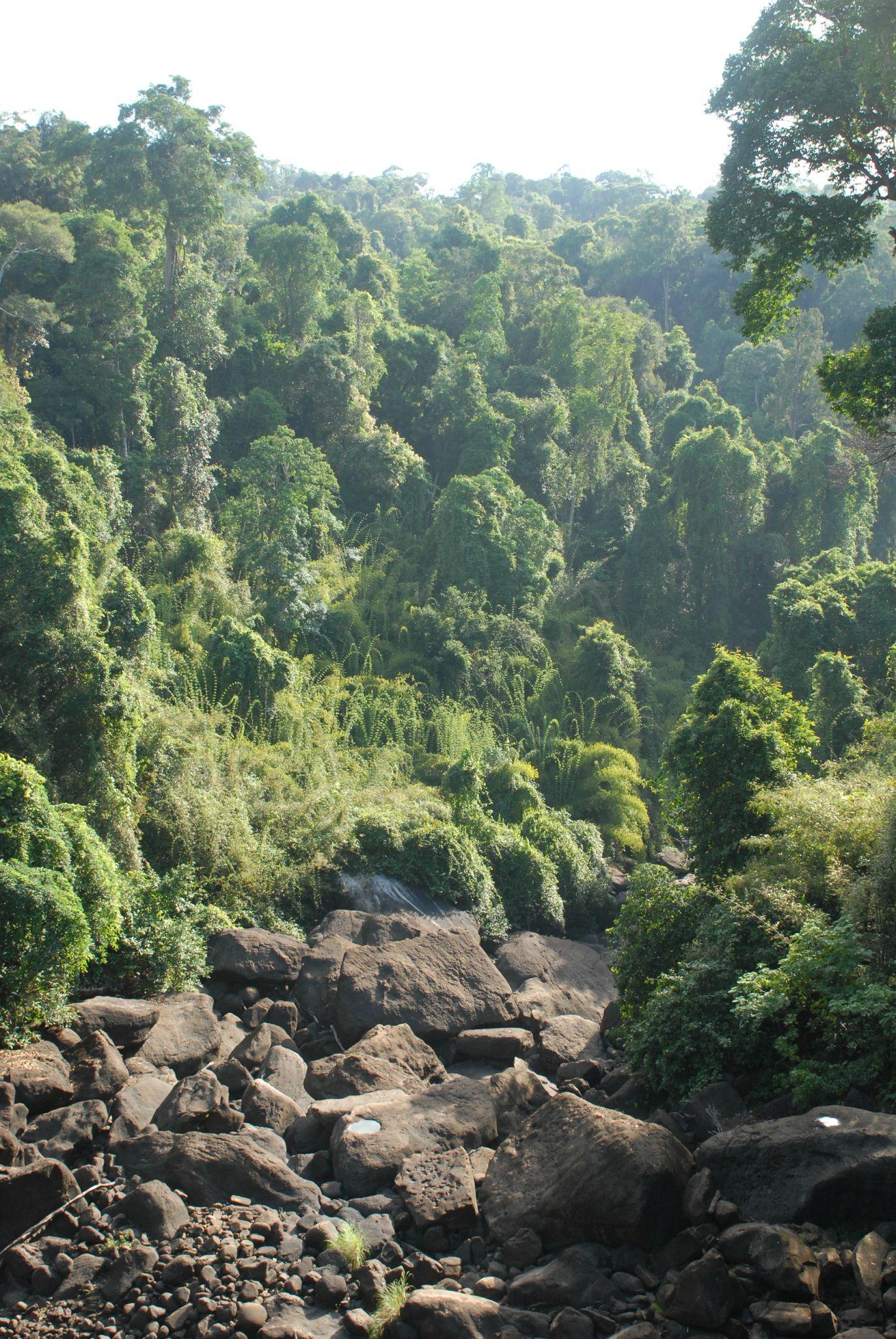 Laos 4 177