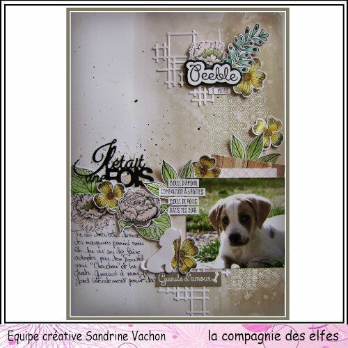 Page PEEBLE 2 MOIS dt LCDE (1)