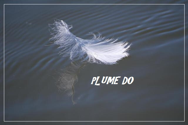 Plume Do_Dominique
